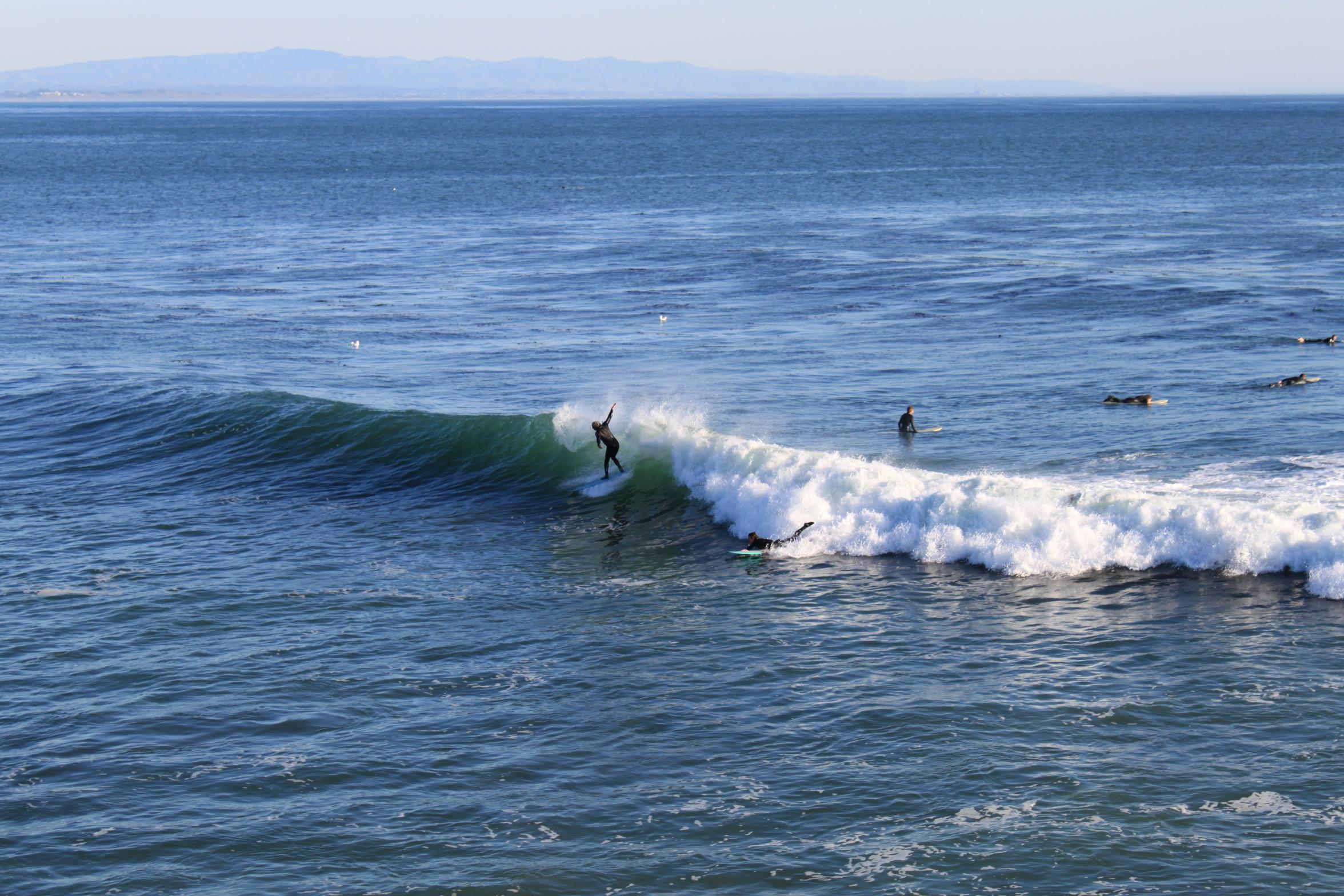 Surfers at Santa Cruz, California