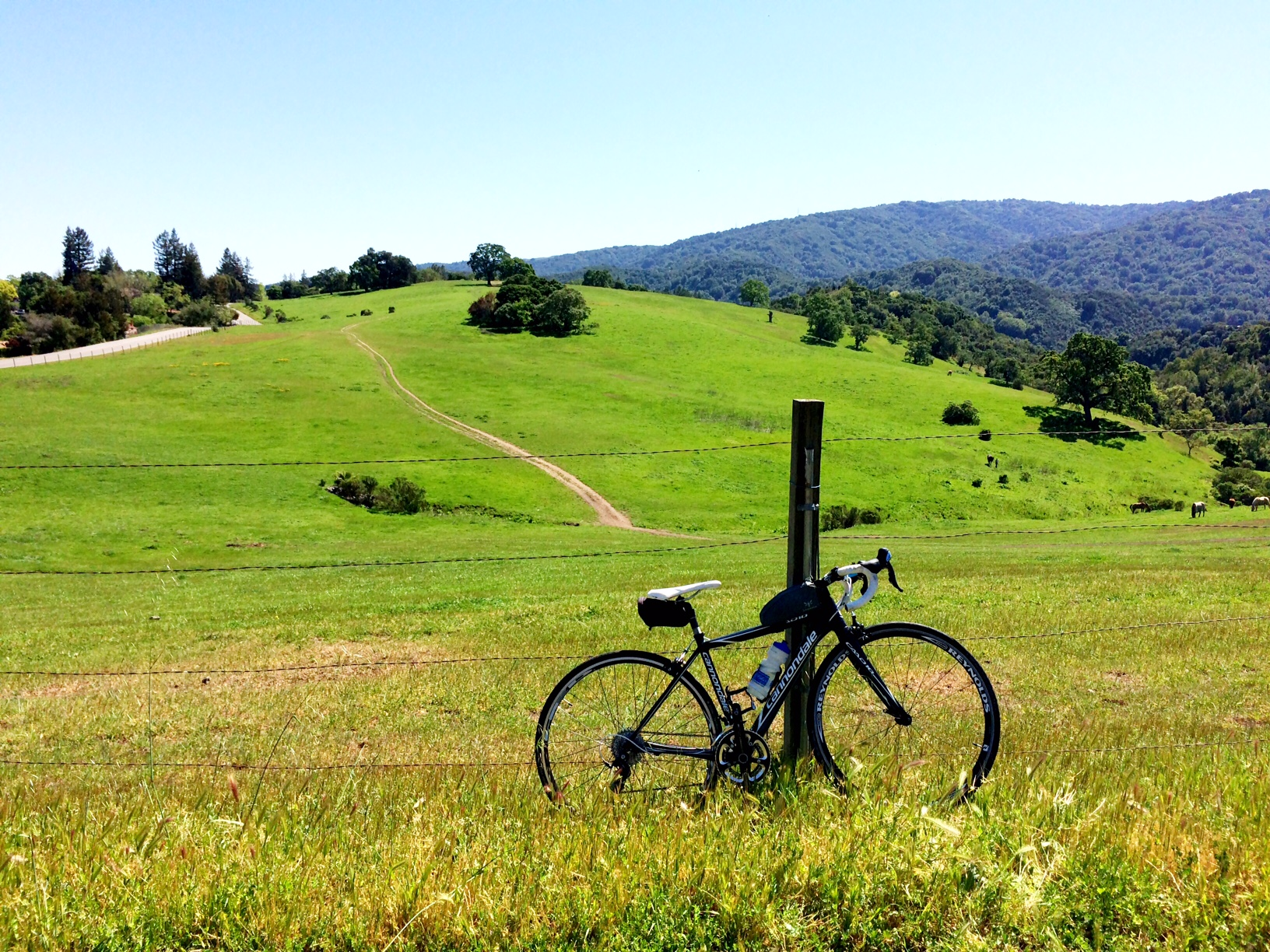 Biking Los Altos Hills