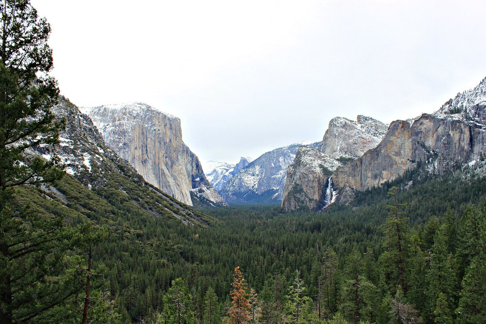 I captured this shot in Yosemite National Park in January 2012. This is the world famous Ansel Adams tunnel view. Who is Ansel Adams? He is a legendary American photographer whose most famous works include hundreds of black and white photographs he took in Yosemite between 1930s and 1940s. What is the tunnel view? It is a tunnel dug through the western end of Yosemite Valley which upon coming out of it, presents you with this incredible view of Yosemite's granite, lush green and waterfall. Timing is very important to photography as it is in all manner of life. With the right timing, season, lighting and circumstance, you can capture either a gripping or gnarly shot.
