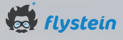 www.flystein.com