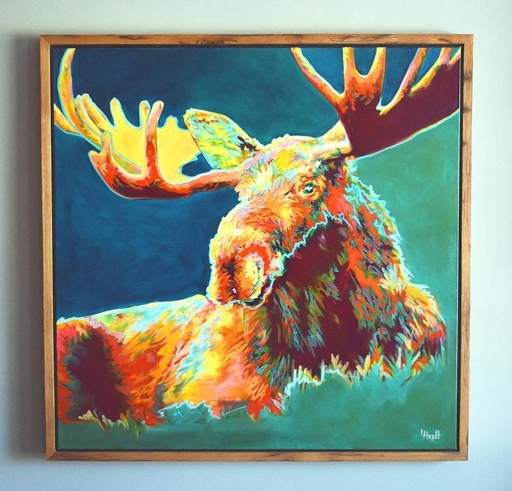 Bull Moose on Canvas   by LAUREL HATCH STUDIO