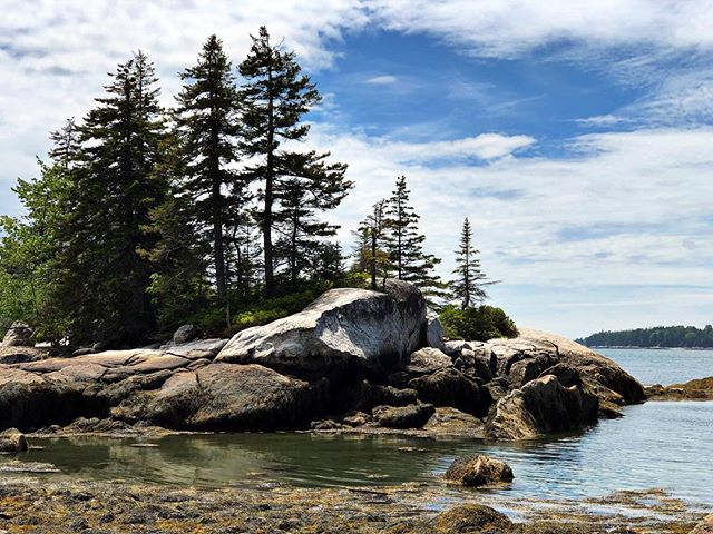 Mid-Week Adventure: hiking the rocks at low tide to discover some creatures that are normally hidden by the sea or having a picnic on the rocks as you watch the tide come and go  PC: Goes to @julie_norman_beachcomber who captured this picture just a few days ago while on her vacation to the Cove  #floodscove