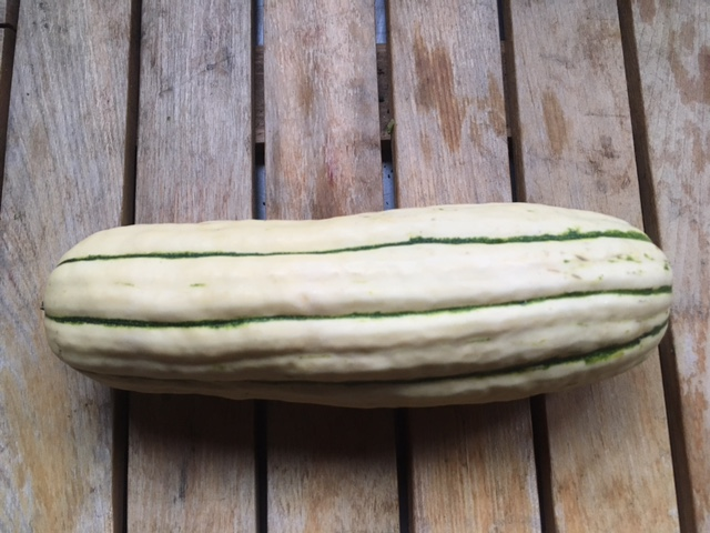 Delicata squash have thin skins and do not require peeling!