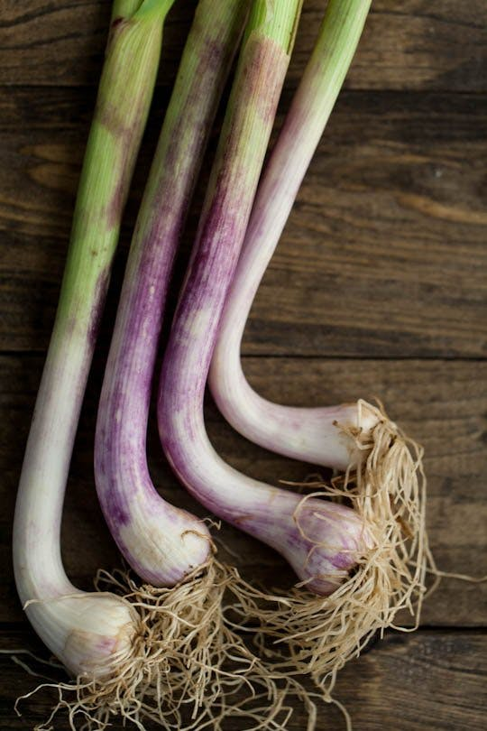 """Article: """"Why Spring Garlic is the Best Garlic"""""""