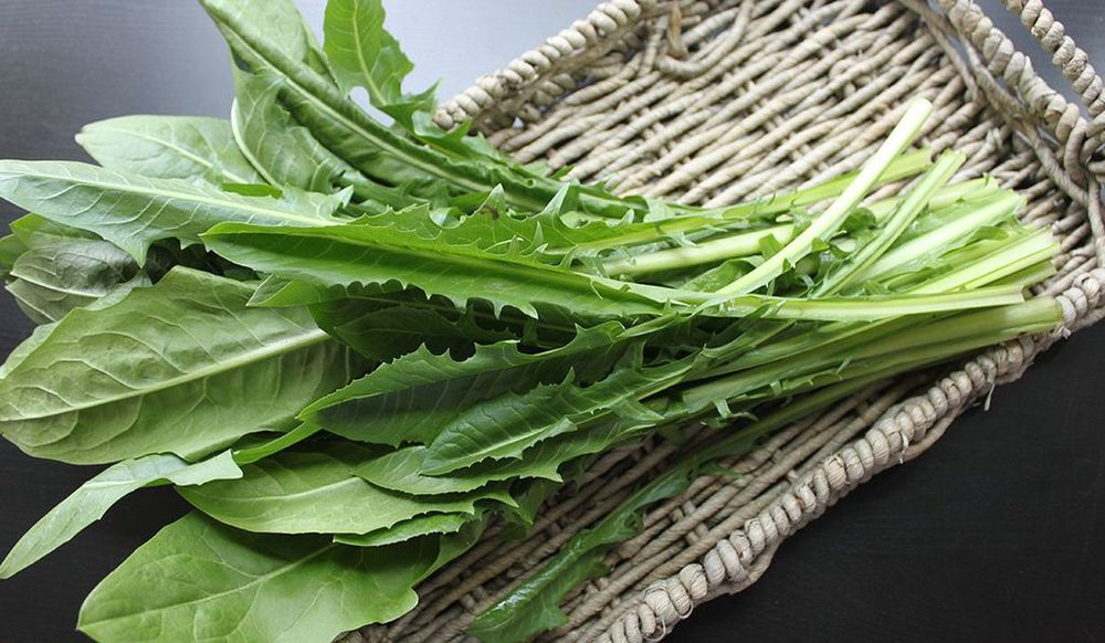 What the Heck Do I Do With Dandelion Greens