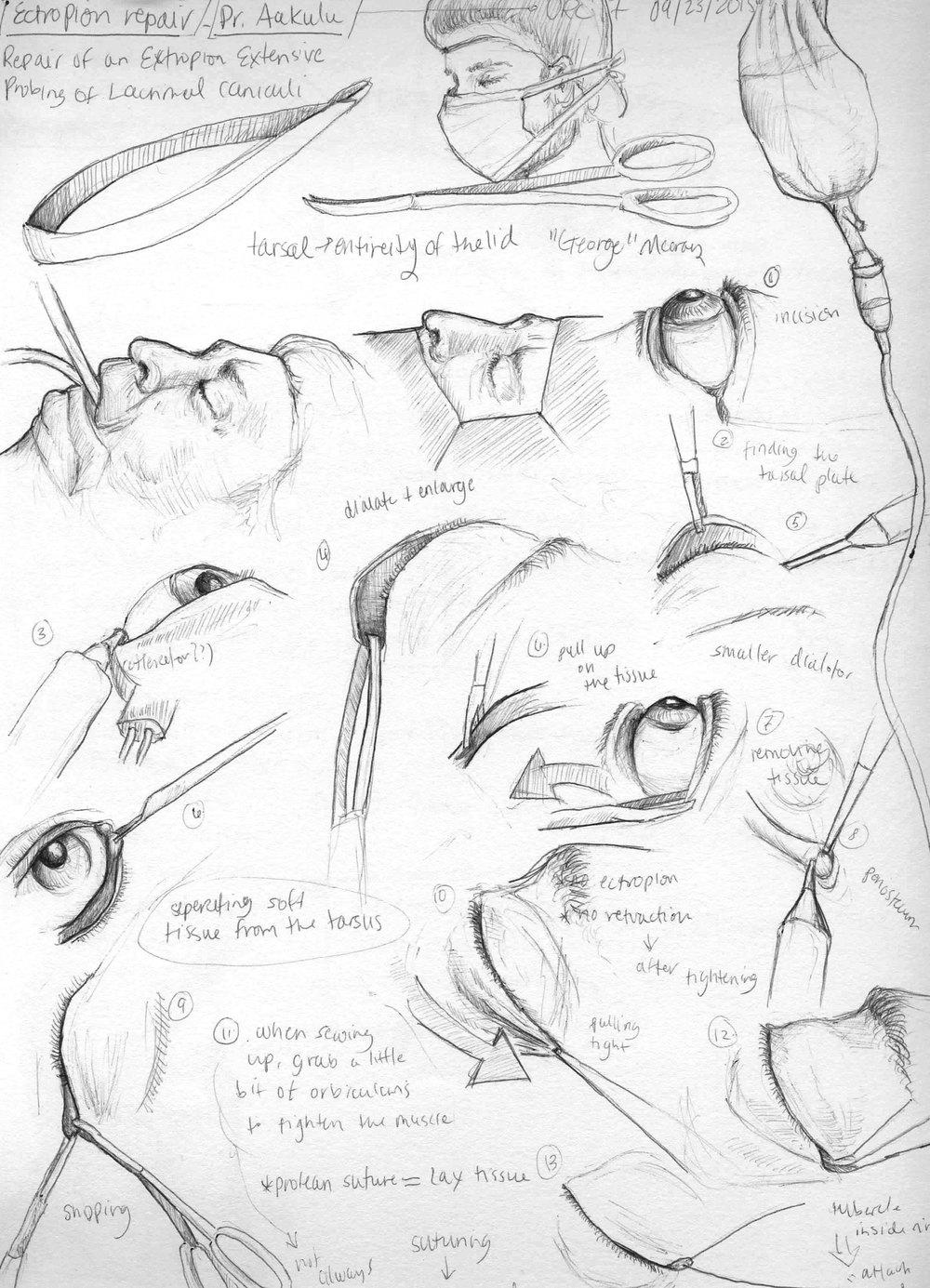 ChandlerR_Sketches-2.jpg