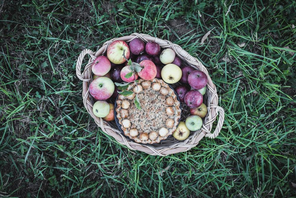 Fall Pies -40.jpg