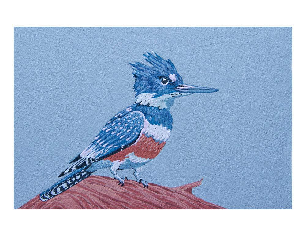 print-kingfisher.jpg