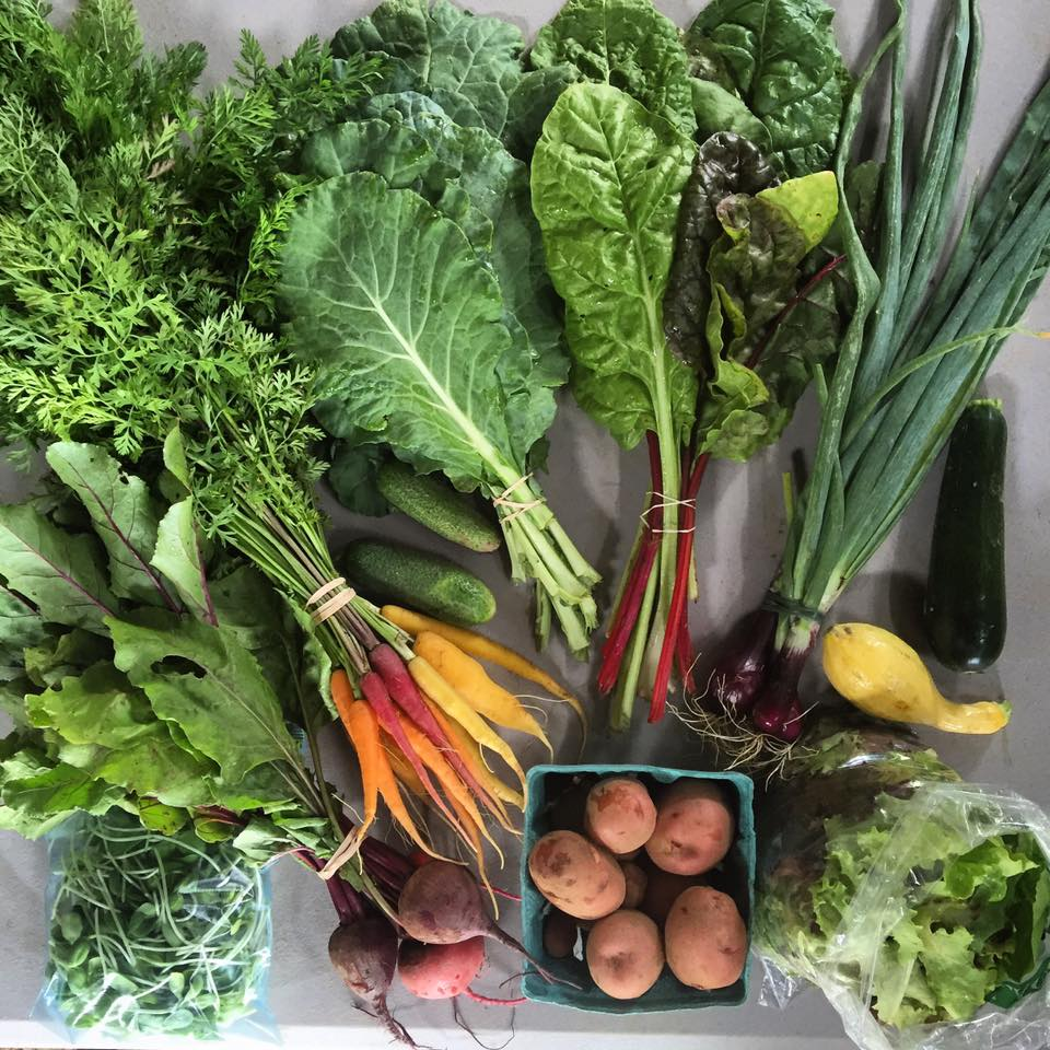 Don't have a CSA yet for 2017? Want to play in the dirt this summer and earn your food for the week? 4hr/week work trade for a CSA share of zero spray vegetables, fruit, flowers, herbs and added value products from Root Bottom Farm.