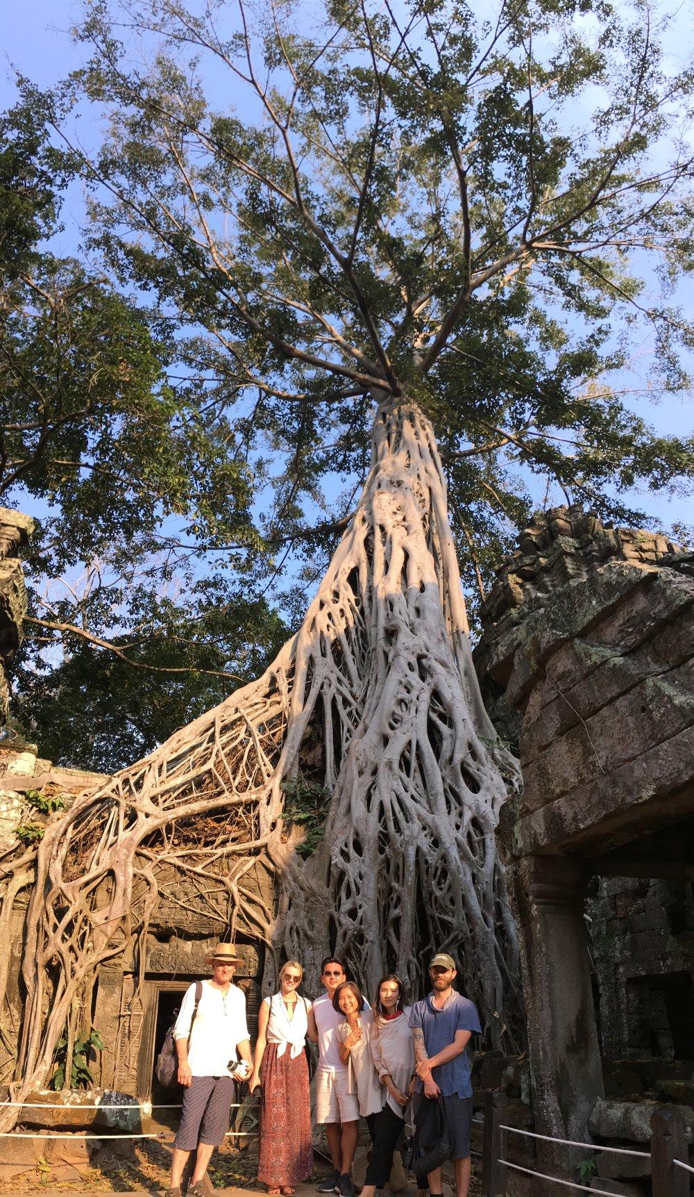 ちょびっとインディアナ・ジョーンズ風のフィリップ(笑)タプロム遺跡での大きなガジュマルの木の根っこで