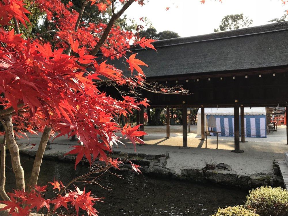 kyoto_IMG_3593.jpg