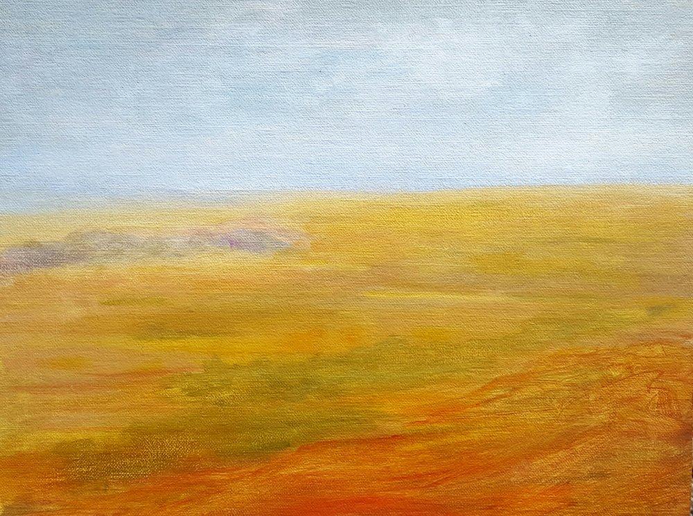 Mandan Plain