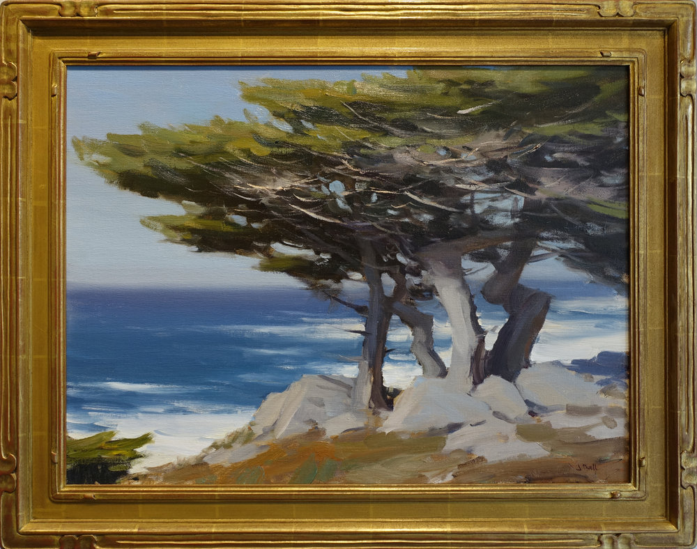 pebble beach cypress 18x24 .jpg