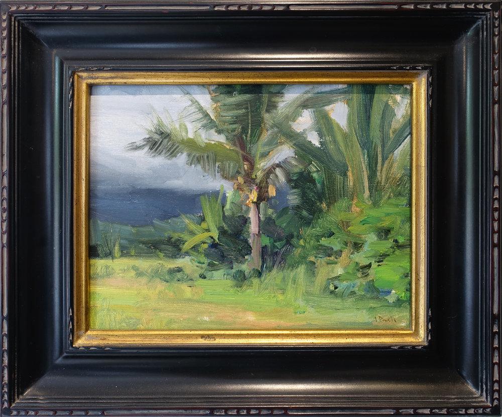 Kauai 8x10 .jpg