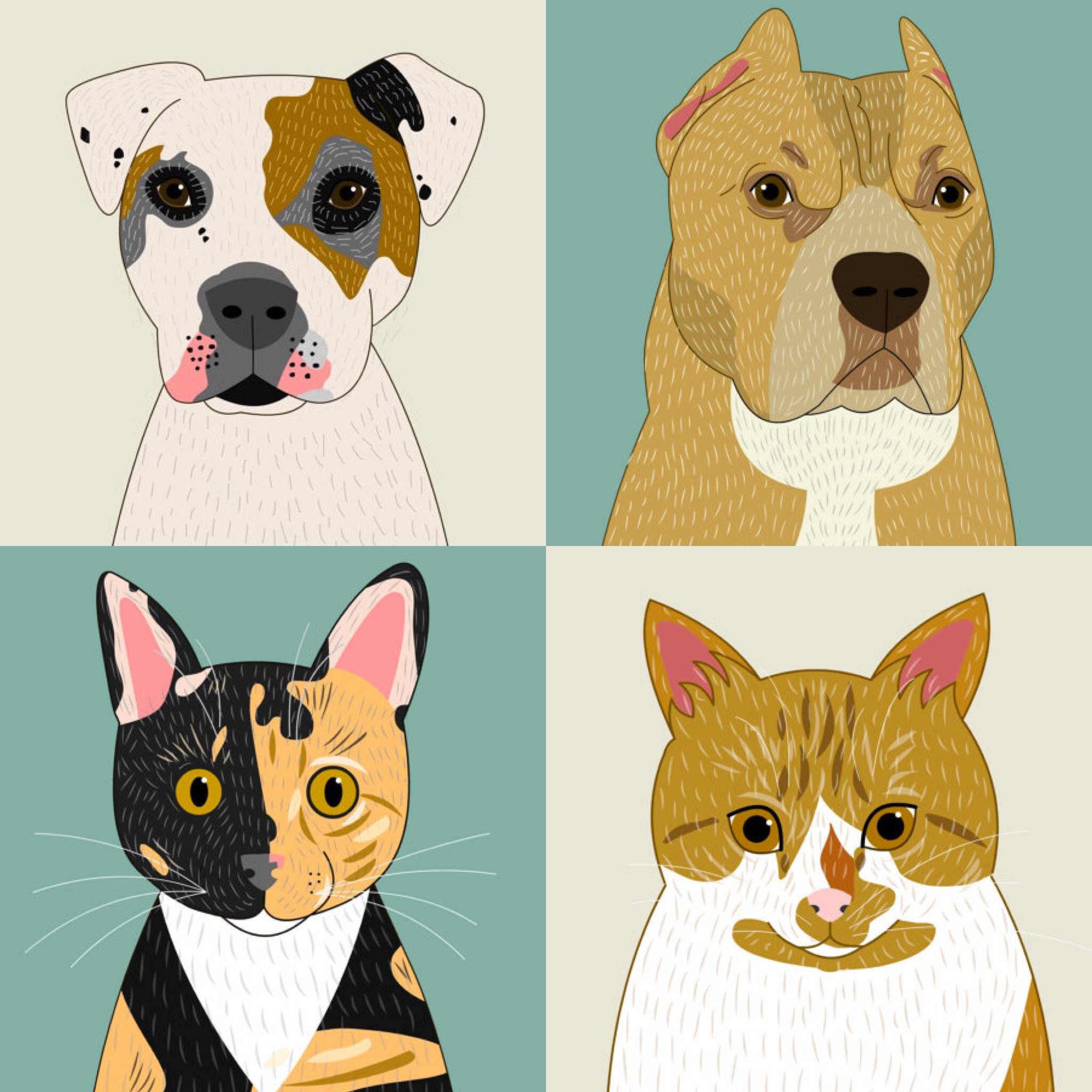 50bcdf71f1f0 SHOP DOG SHOP CAT · 0. CUSTOM PET PORTRAITS
