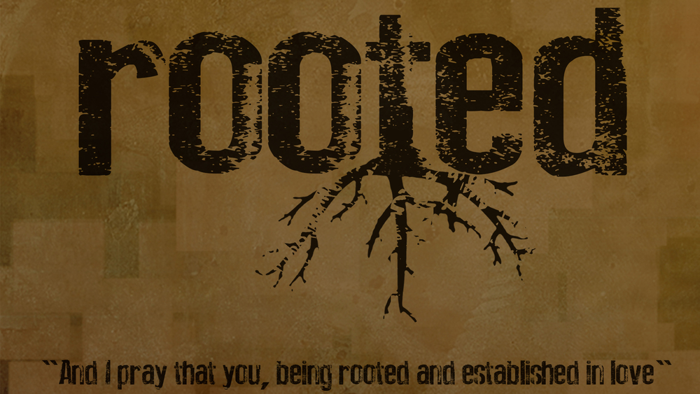 rooted option3  1920.jpg