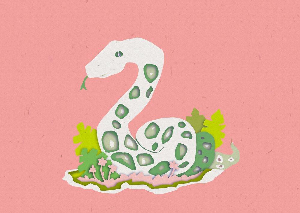 snakepattern2.jpg
