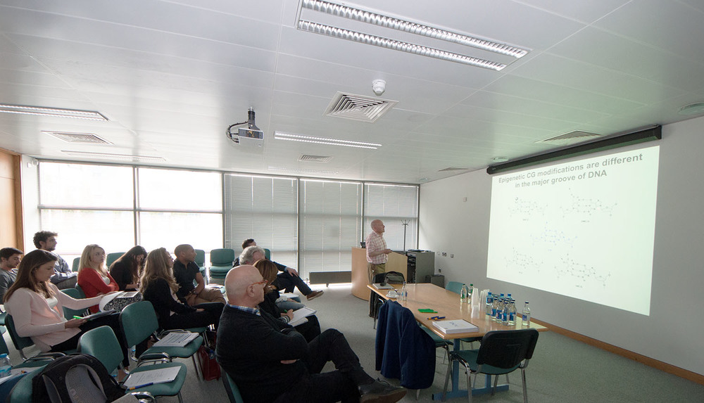Prof. Tom Brown of Oxford presenting to the ClickGene ITN consortium at DCU.