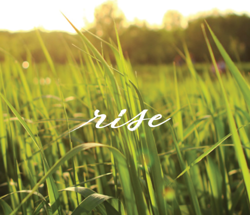 RISE | 40 day practice