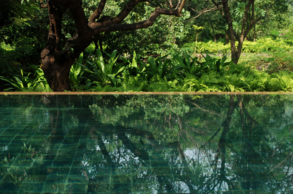 Mumbai hillside garden