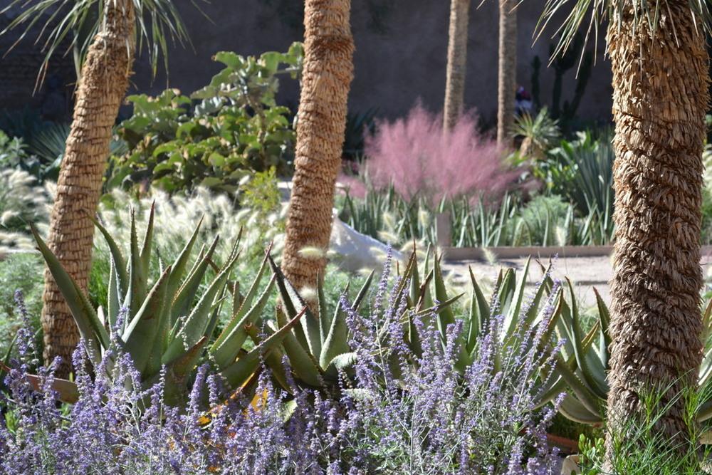 Le jardin secret andy hamilton studio for Le jardin secret livre