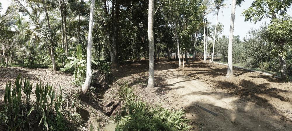 Kerala 1309_ 06.jpg