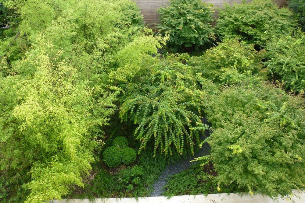 Paris garden