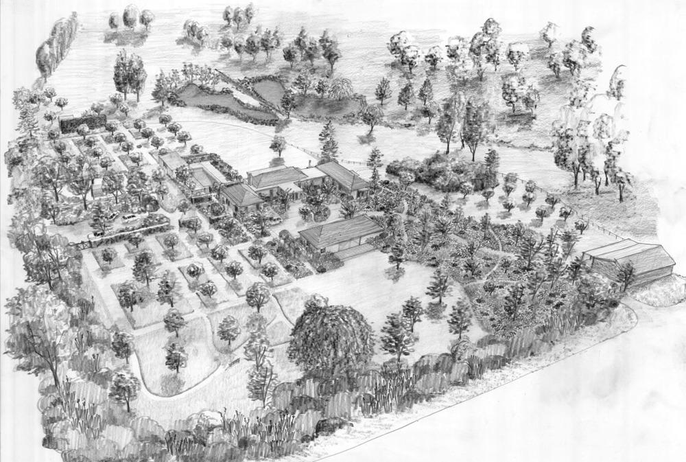 Andy Hamilton Studio Matakana garden