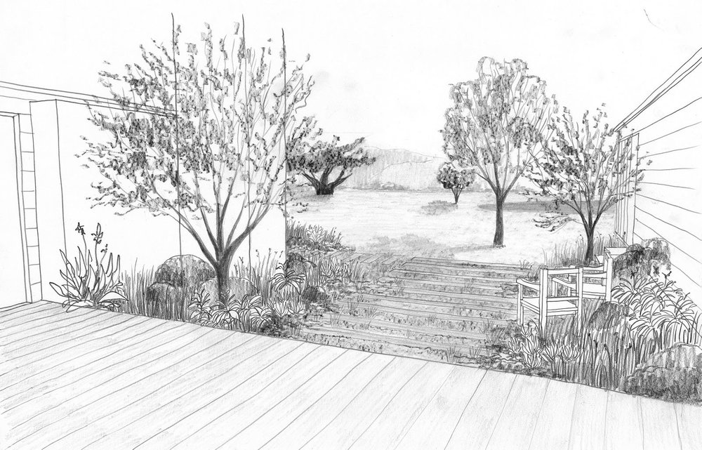 north garden sketch.jpg