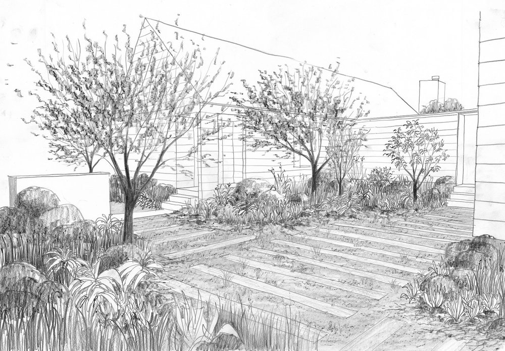 entrance courtyard sketch.jpg