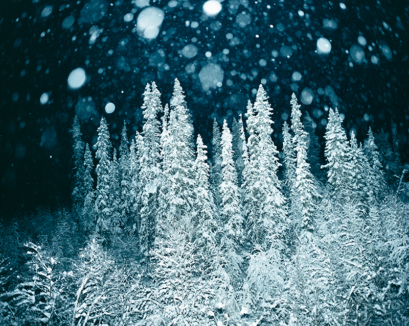 135_Winter.jpg