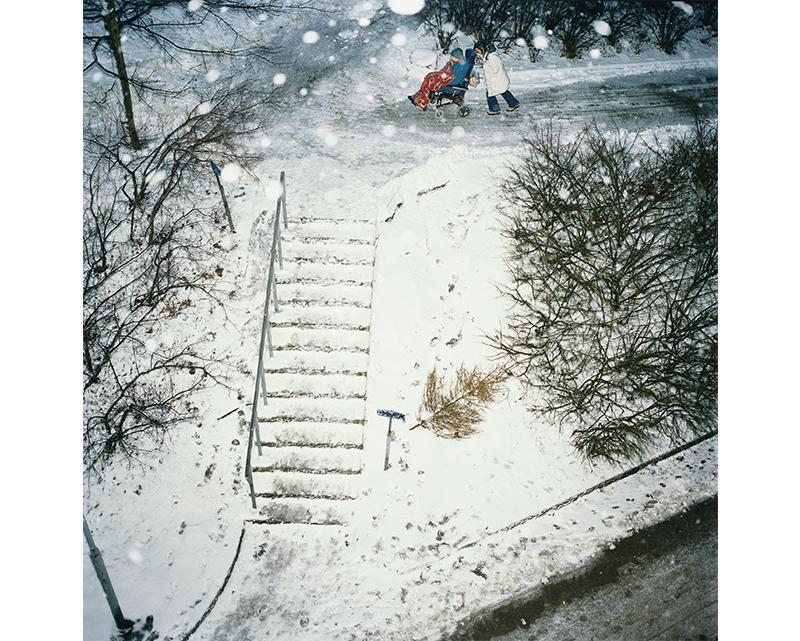 Vinter / Winter