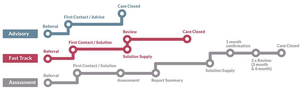 Advisory Fast Track and Assessment model diagram