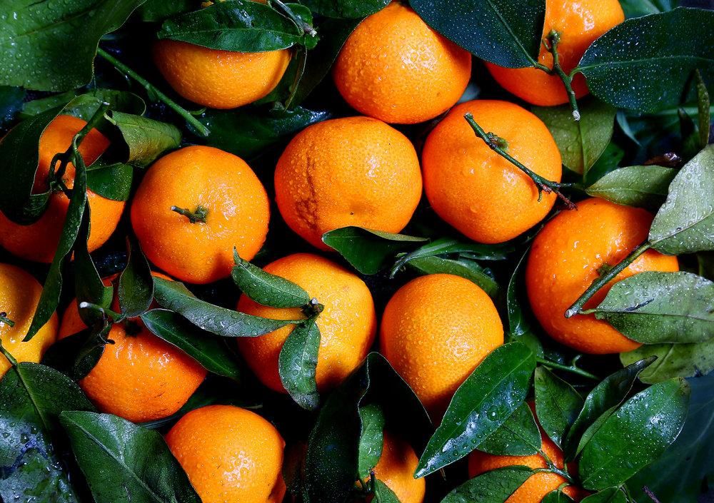 Tangerine High Res.jpg
