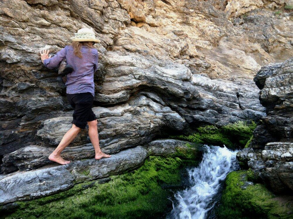 NancySteinArt-adventuring.jpg
