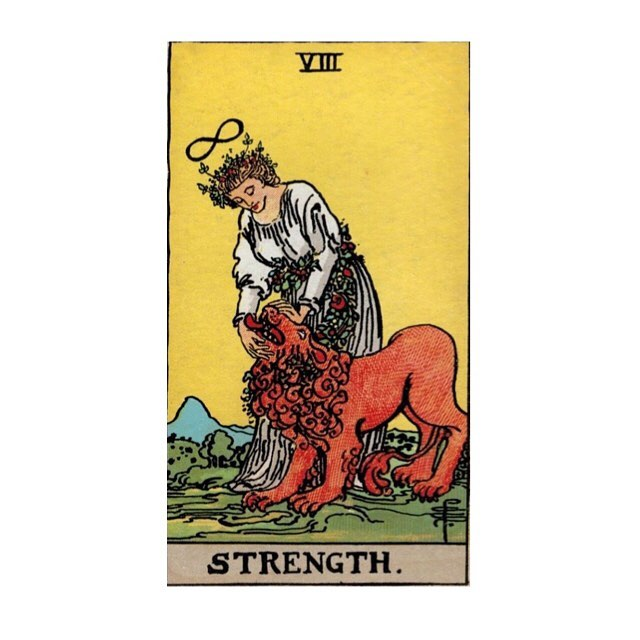 As today's #mondaymotivation I want to talk for a second about where strength and womanhood has fit in our lives as of recently • Moving from college and into the world has presented us with all the challenges of going through a transition. This symbol of the woman taming the lion speaks to inner strength more than outer — more beauty & brains than brawn. It is the combination of passion and compassion, learning to tame the beast within and take responsibility for yourself and for your life, but to also accept and love that inner fire. It's to be present in a way that is honest and loving, while continuing to thrive. This form of strength, one that is deeply rooted in femininity, is something we're both working to become more in tune with, every day. 💜