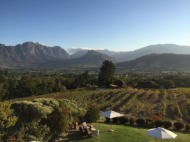 Franschhoek vineyards.