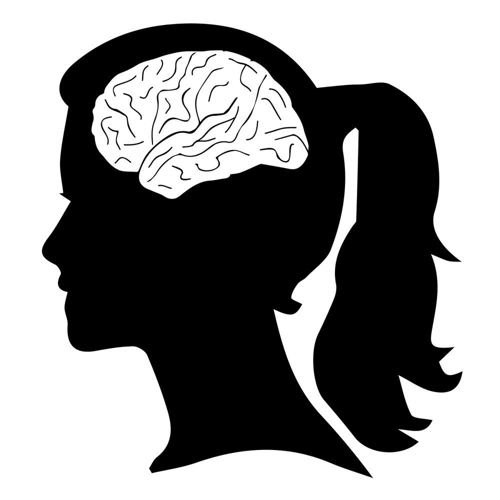 Island Dr Brain Map