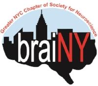 braiNY logo-cropped_sm (1).jpg