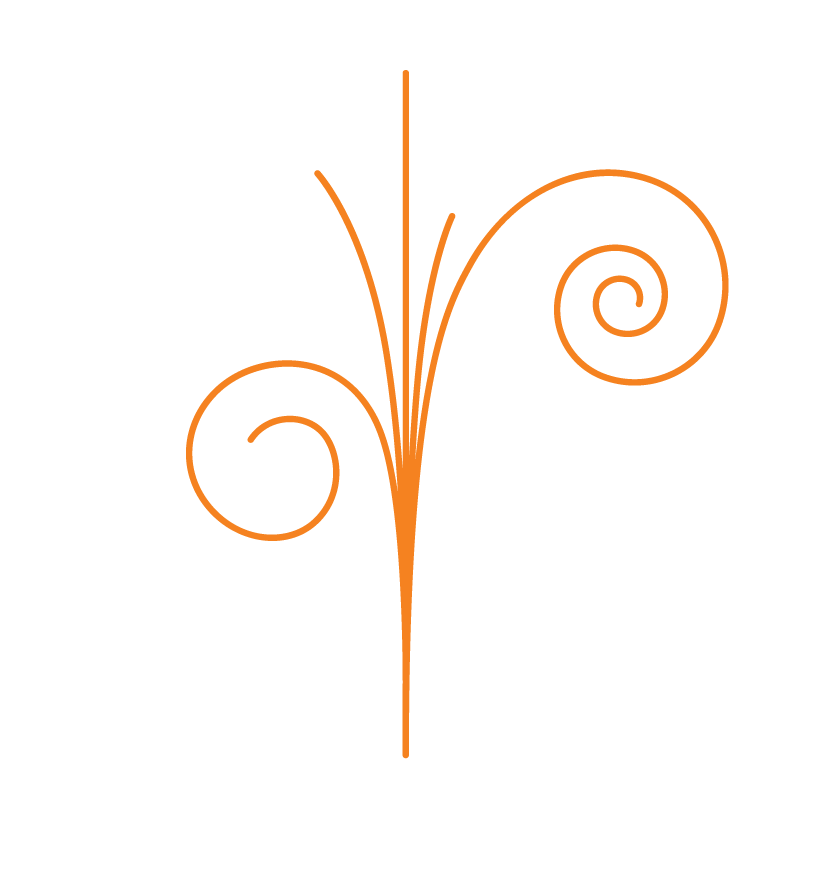 Icon_orange.png