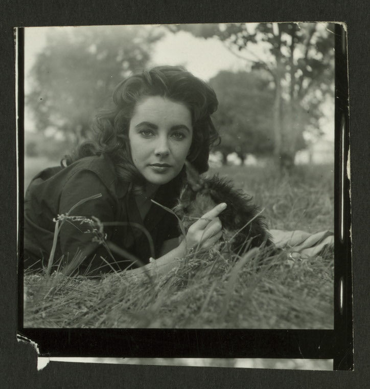 courtneylewis :      NYPL  is  sharing photos of Elizabeth Taylor  from the  Billy Rose Theatre Collection  on  their Tumblr .