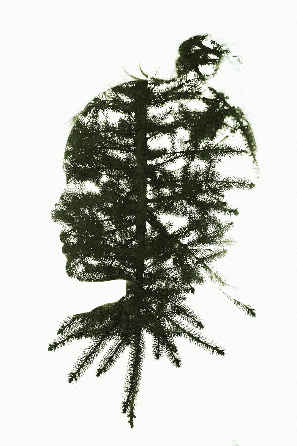 Hello-olivia-photography-long-island-family-children-childrens-photographer-double-exposure-pine-tree-profile