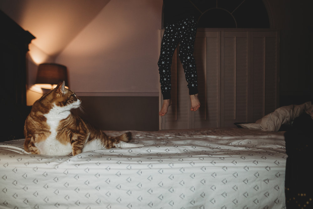 hello-olivia-photography-long-island-photographer-lifestyle-child-cat-jump-on-bed.jpg