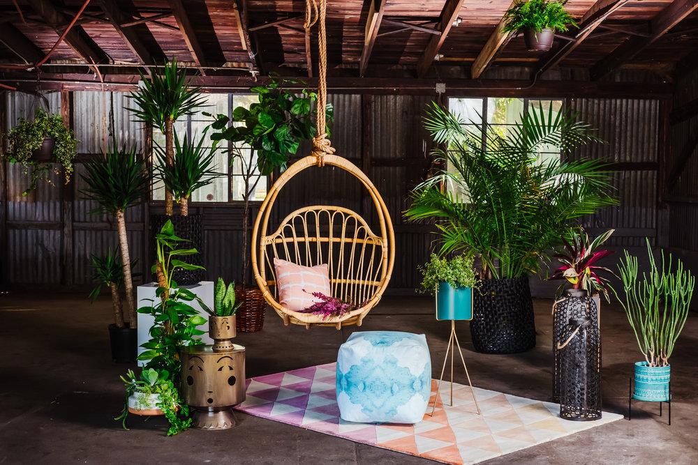 Ann Cox Design_Interior Design_Modern Bohemian-1