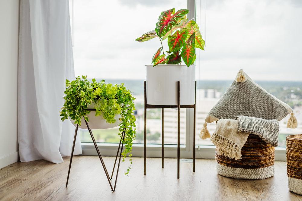 Ann Cox Design_Interior Design_ Contemporary Home Decor-5
