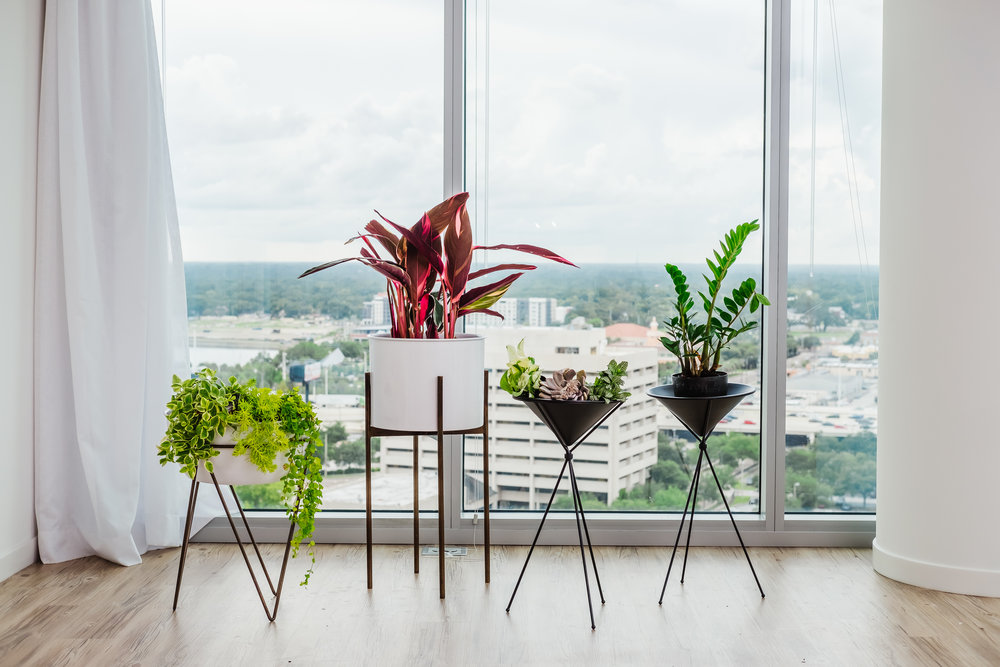 Ann Cox Design_Interior Design_ Contemporary Home Decor-6