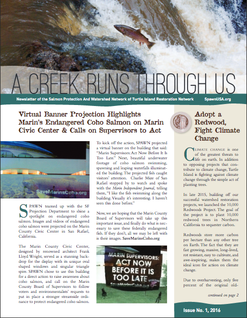A Creek Runs Through Us  is the print newsletter of the Salmon Protection And Watershed Network (SPAWN). It is sent out to Marin County residents. I wrote and edited this publication.  Click here to download a PDF.   View more newsletters by clicking here.