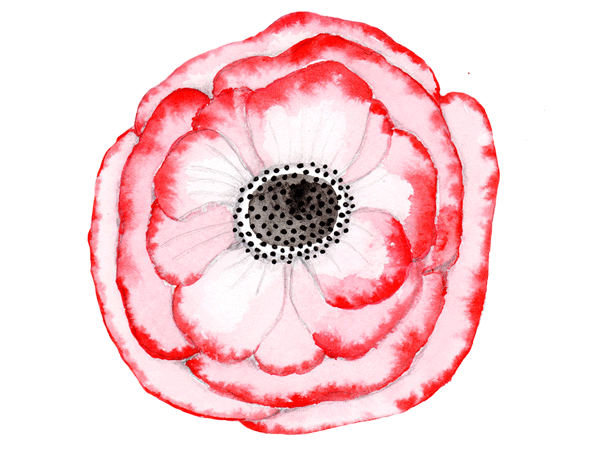 ContactPageFlower2.png