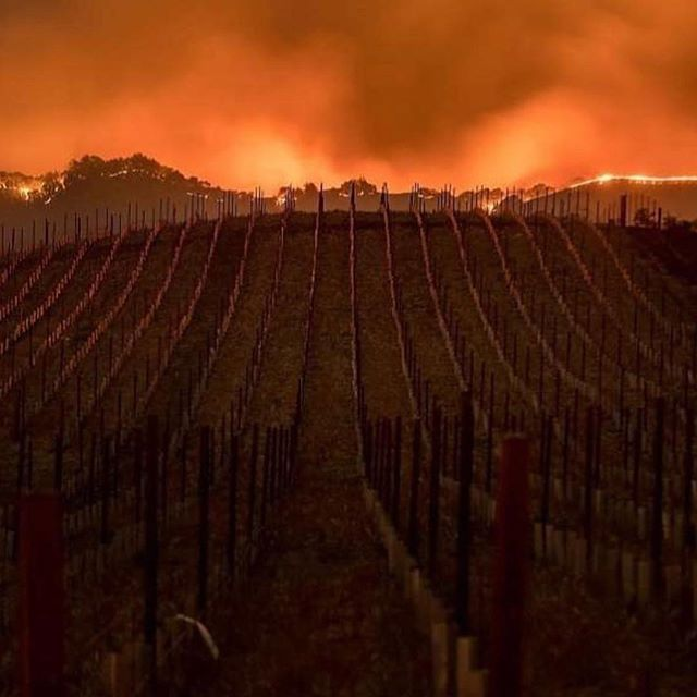 No words. We are so sad for all who have lost their loved ones, homes, properties, possessions, wineries, livelihoods... Mother Nature is sure mysterious... pray for Napa and Sonoma 🙏🏼 This place holds a special spot in our hearts. . . . #Repost @kayjdkay