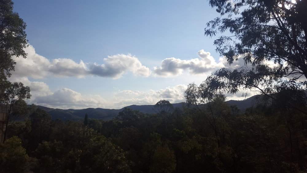 A pretty nice view of the Hunter Valley from the EcoTas conference!